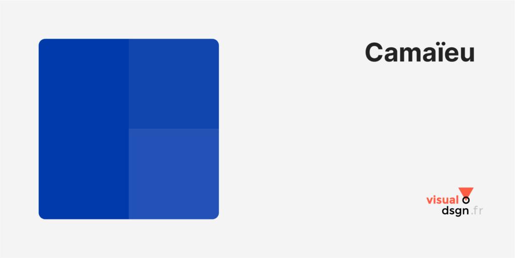 Vocabulaire de la couleur : camaïeu