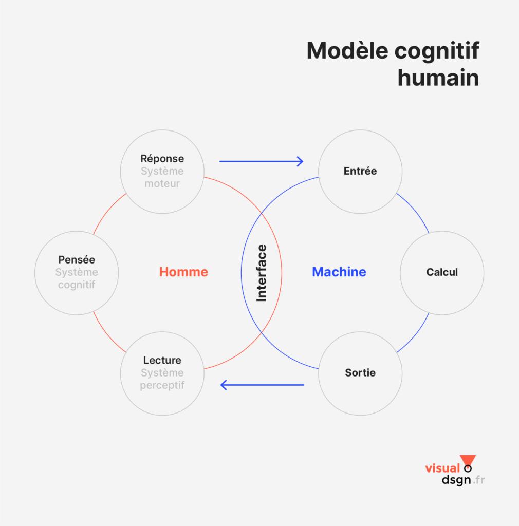 Ergonomie cognitive - Le modèle cognitif humain